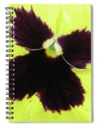 Perfectly Pansy 05 Spiral Notebook