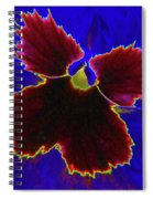 Perfectly Pansy 05 - Photopower Spiral Notebook