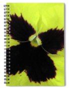 Perfectly Pansy 06 Spiral Notebook