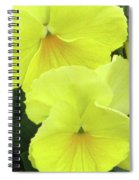 Perfectly Pansy 09 Spiral Notebook