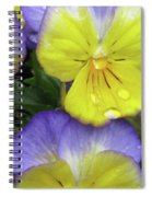 Perfectly Pansy 11 Spiral Notebook