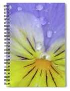 Perfectly Pansy 16 Spiral Notebook