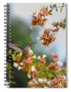 Perfectly Peach Spiral Notebook