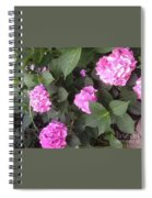 Perfectly Pink Spiral Notebook