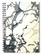 Period Wallpaper Spiral Notebook