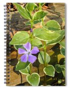 Periwinkle Spiral Notebook