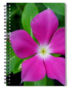 Periwinkle Flower Spiral Notebook