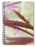 Perlettes Spiral Notebook