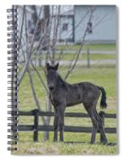 Perry's Coat Standing Spiral Notebook