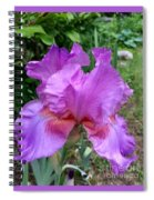 Persian Berry Spiral Notebook