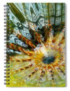 Persian Pool Lily Pad Spiral Notebook