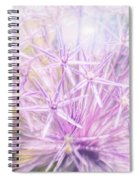 Persian Stars Spiral Notebook