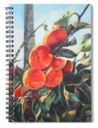 Persimmons Spiral Notebook