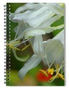 Peruvian Lilies 3 Spiral Notebook