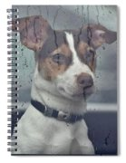 Pet Looking Out Car Window On Rainy Day Spiral Notebook
