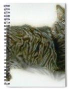 Pet Portrait - Buddy Spiral Notebook