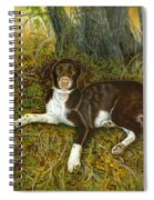 Pet Portrait - Springer Spaniel, Milly Spiral Notebook