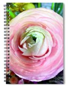 Flower, Petal Labyrinth Spiral Notebook