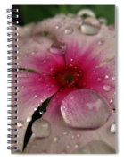 Petal Surfing Spiral Notebook