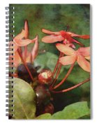 Petals And Berries 8618 Idp_2 Spiral Notebook