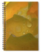 Petals And Drops Spiral Notebook