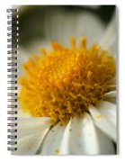 Petals And Pollen Spiral Notebook