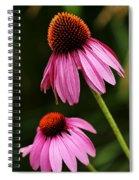 Petals And Quills Spiral Notebook
