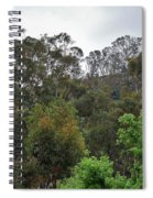 Peters Canyon In The Rain 8 Spiral Notebook