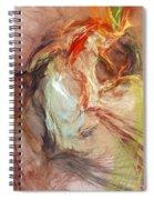 Petit Mal Spiral Notebook