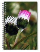 Petite Daisies 2 Spiral Notebook