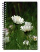 Petite Daisies 3 Spiral Notebook
