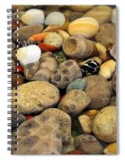Petoskey Stones With Shells Ll Spiral Notebook