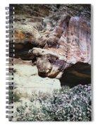 Petra, Transjordan: Cave Spiral Notebook
