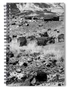Petrified Forest National Park #2 Spiral Notebook