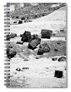 Petrified Forest National Park #3 Spiral Notebook