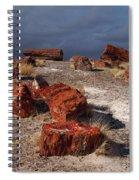 Petrified Forest National Park Spiral Notebook