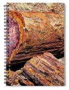 Petrified Log Spiral Notebook