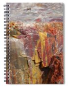 Petrified Wood 2 Spiral Notebook