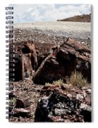 Petrified Wood #2 Spiral Notebook