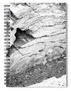 Petrified Wood #5 Spiral Notebook