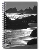 Pfeiffer Beach Sp 8192 Spiral Notebook