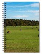 Pharr Mounds - Natchez Trace Spiral Notebook