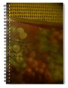 Phase Five  Spiral Notebook