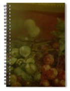 Phase One  Spiral Notebook