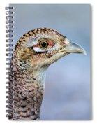 Pheasant Hen Spiral Notebook