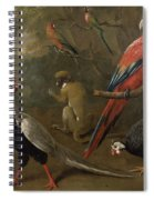 Pheasant Macaw Monkey Parrots And Tortoise  Spiral Notebook