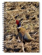 Pheasant On The Move Spiral Notebook
