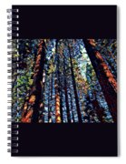 Phil's Trees Spiral Notebook