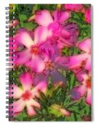 Phlox Fun - Pink Glow Spiral Notebook
