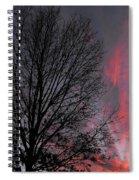 Phoenix Cloud Rising Spiral Notebook